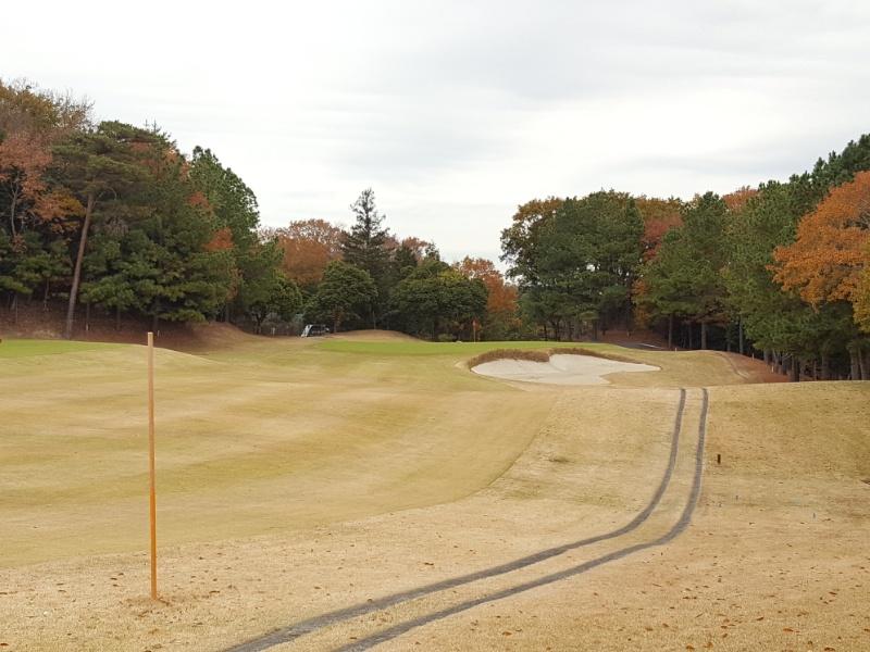 ダンロップゴルフコースフェアウェイ