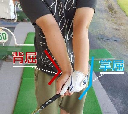 ゴルフの掌屈